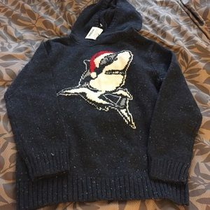 NWT Boys hooded sweater